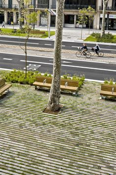 The subtle grass between the stone could make for a softer, greener side to your district as seen in this image of Passeig de St Joan boulevard.