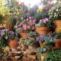 Niches in stone retaining wall allow for containers or display spaces.