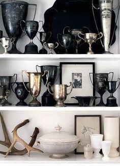 trophies + antlers