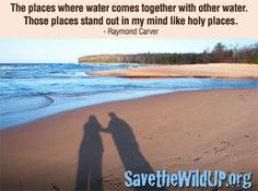 """Save the Wild UP:  """"The places where water comes together with other water.  These places stand out in my mind like holy places."""" - Raymond Carver"""