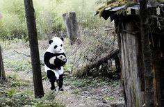 Panda caregiver in costume