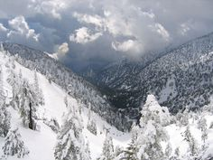 Mount Baldy -- Mount San Antonio (or Mount Baldy as it's commonly known) is a sweeping, majestic respite from the day-to-day haranguing of city life, and is perfect for any L.A. transplant who misses being surrounded by a little snow.   18 Beautiful Places You Probably Didn't Know Were In Los Angeles