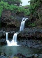 There are so many waterfalls along the road to Hana. Each one is more beautiful than the last.