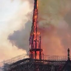 La flèche de Notre Dame s'effondre. the arrow of Notre Dame collapsed. more than 800 years of history burning into flames.My heart is hurting right now watching the Notre Dame Cathedral in Paris burning down. Pac Man, Most Beautiful Pictures, Cool Pictures, Funny Pictures, Haha Funny, Funny Memes, Hilarious, Jokes, Paris