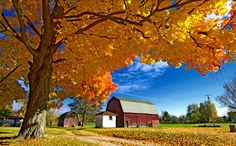 Farm Barn in Fall Country Life, Country Living, Country Roads, Farm Barn, Autumn Nature, Country Scenes, Down On The Farm, Old Barns, Take Me Home