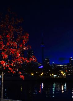 Toronto early morning
