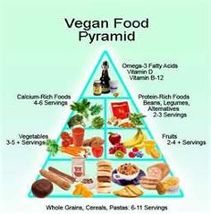 disadvantages of canada food guide Did you know that vegan fast food totally exists we put together this handy guide to help you navigate the chain restaurant world  after talks with peta,.