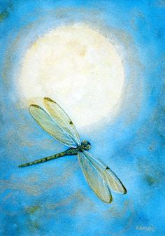 Dragonflies symbolize our ability to overcome hardships and reminds us to reconnect with ourselves