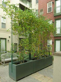 rectangle fiberglass planters with trellis, Minneapolis, MN