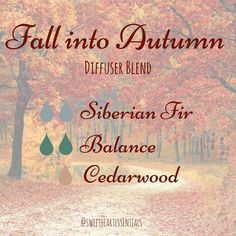 Fall Diffuser Blend    Cedarwood  Balance  Siberian Fir