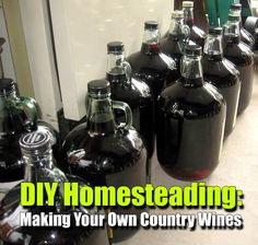 DIY Homesteading: Making Your Own Country Wines - SHTF Preparedness In theory, doing vino is Homemade Wine Recipes, Homemade Alcohol, Homemade Liquor, Drink Recipes, Wine And Liquor, Wine And Beer, Wine Drinks, Beverages, Alcoholic Drinks