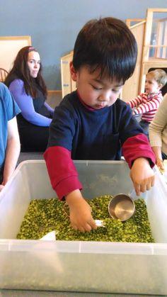 Scooping Peas