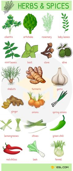 Herbs and Spices! List of herbs and spices in English with examples and pictures. Learn these herb names and spice names to improve and expand your vocabulary about fruits and vegetables in English. English Time, English Course, Learn English Words, English Food, English Writing, English Study, English Grammar, English Idioms, English Resources