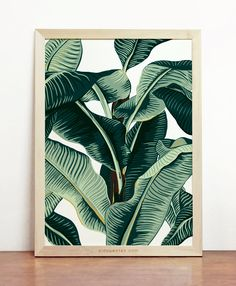 Hey, I found this really awesome Etsy listing at https://www.etsy.com/listing/159231296/banana-leaf-print-tropical-poster-palm