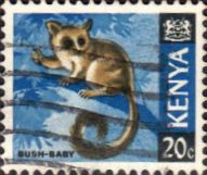 Postage Stamps Kenya 1966 Republic Animals Lesser Bushbaby SG 23 Fine Used Scott 23 For Sale Take a look