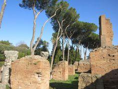 Carnet de voyage à Rome Forum Romain