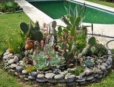 jardines cactus piedras - Buscar con Google