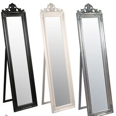 French Tall Standing Mirror
