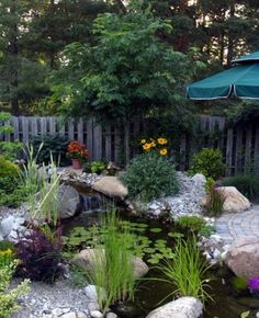 Backyard Pond Design Ideas 11