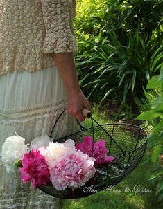 Grandmas Garden, Peonies Garden, Picnic Time, Absolutely Fabulous, Flower Basket, Hello Everyone, Spring Time, Hydrangea, Sunny Days