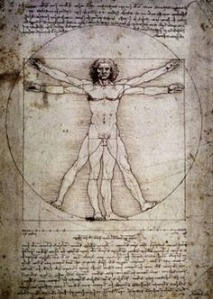 Vitruvian Ideas-Proportion theories in art and architecture-DaVinci
