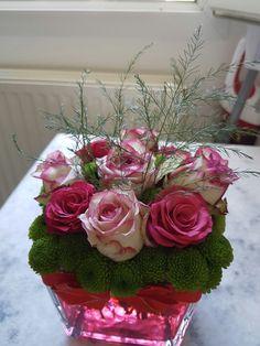 ROSES ROUGE ET  ROSES BLANCHE ROSE