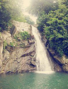 Waterfall in Catanduanes, Bicol Region, Philippines #waterfall #philippines #water