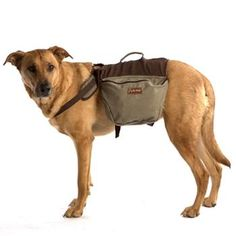 Aussie Naturals Cotton Dog Backpack at BaxterBoo