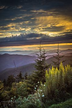 Sunset from the Clingmans Dome parking lot at The Great Smoky Mountain National Park. If you happen to shoot sunset don't go all the way to Clingman Dome, shoot it from the parking lot. Much better view from there.