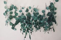 So here's a thought: you want to use eucalyptus in your wedding and you love emeralds so how about we use that in the color scheme? A forest/eucalyptus green dress would go great with our pale complexions L Eucalyptus, Eucalyptus Garland, Garland Wedding, Wedding Flowers, Wedding Decorations, Fall Garland, Floral Garland, Garland Ideas, Plantas Indoor