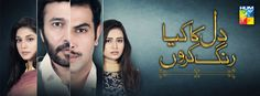 Watch Online Dil Ka Kya Rung Karun 15 March 2015 in High Quality Episode 3