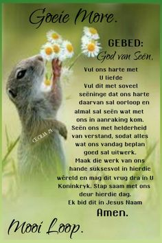Prayer Quotes, Spiritual Quotes, Afrikaanse Quotes, Goeie Nag, Goeie More, Good Morning Quotes, Affirmations, Prayers, Words