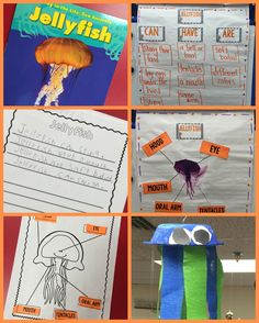 Jellyfish and ocean lesson plans for reading, writing and research!  Also includes a jellyfish art project!