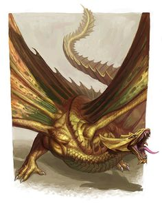 Dungeons And Dragons Art, Dnd Dragons, Cool Dragons, Dragon Illustration, Fantasy Illustration, Mythical Creatures Art, Fantasy Creatures, Fantasy Dragon, Fantasy Art