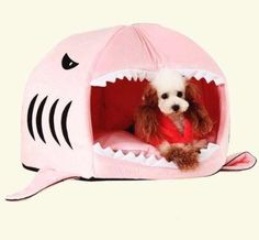 Pet Shark Round House     Buy it now >>>>>   http://amzn.to/29PCeVc