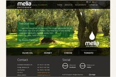 Website for Ecogreen Melia Delifoods trading company in Athens Olive Tree, Trading Company, Athens, In This World, Hold On, Website