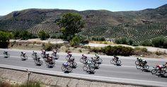 La Marina Alta vuelve a ser escenario de la Vuelta Ciclista a España en 2016 y en Bellavista Residential puedes alojarte y vivir con gran intensidad estas fabulosas etapas. Residential Complex, Lush Garden, Costa, Park, Nature, Beautiful, Live, Naturaleza, Parks