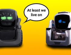 Anki Vector is out, and with it the inevitable comparisons between him and Cozmo robot will begin. So, what is the difference between Cozmo and Vector? Basic Programming, Python Programming, Cozmo Robot, Scrolling Text, Software Development Kit, While Loop, Vector Robot, Different Lines