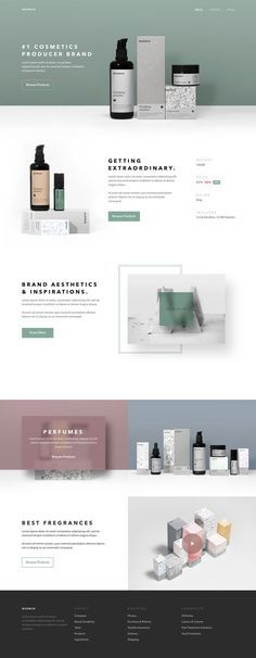 corporate identity and packaging for a cosmetic brand, modern website.