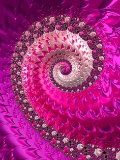 """""""Spirale fraktaler Luxus in rosa pink und rot"""" Digital Art by Matthias Hauser posters, art prints, canvas prints, greeting cards or gallery prints. Find more Digital Art art prints and posters in t. Large Art Prints, Fine Art Prints, Framed Prints, Canvas Prints, Framed Art, Wall Art, Spiral Art, Gifts For An Artist, Art Base"""