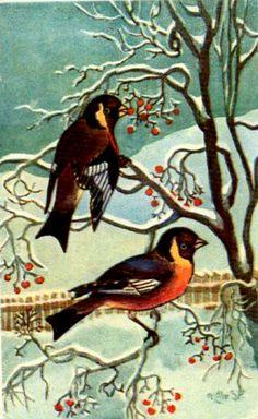 Julekort Paul Lillo-Stenberg 2 fugler brukt 1924