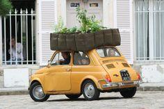 BACSAC nl fiat500 vervoer moestuin