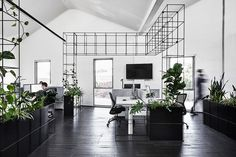 Candlefox HQ by Tom Robertson Architects   Indesignlive
