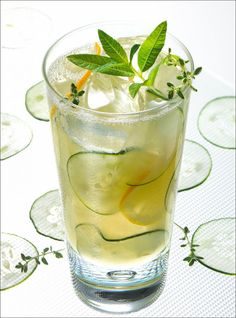 Cucumber Lemon Spritzer @diyinspired