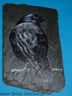 Kruk * obraz na kamieniu Sklep GeoGut.pl