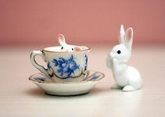 bunny in a teacup - Adorable!