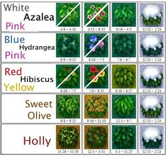 AC: New Leaf Bush Chart