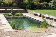 natural pool designs for small backyards backyard design photo of worthy best ideas landscaping desig. swimming pool ideas for backyard backyard swimming. Swimming Pool Pond, Natural Swimming Ponds, Natural Pond, Swimming Pool Designs, Indoor Swimming, Super Natural, Natural Fence, Indoor Pools, Piscine Diy