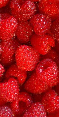 Free food stock photos and images - raspberries fruits fruit berries food.