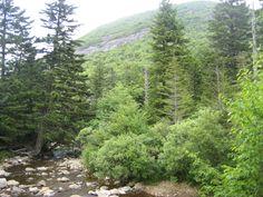 Mountains to Sea Trail, NC